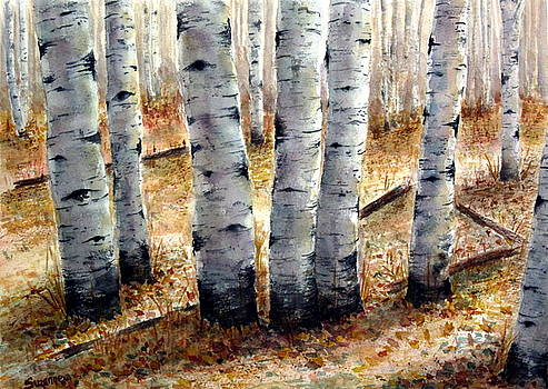 Colorado Trail by Suzanne Krueger