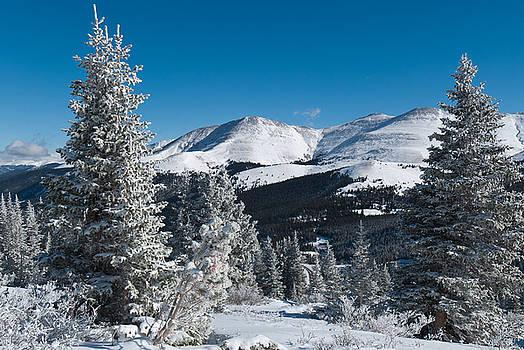 Colorado Winter Majesty by Cascade Colors