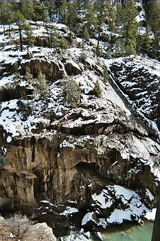 Colorado Winter Scene by Allison Jones