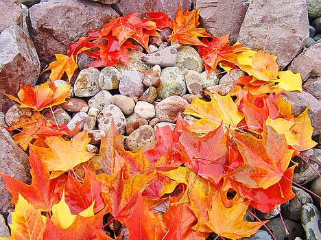 Baslee Troutman - Colorful Autumn Leaves art print Rock Garden