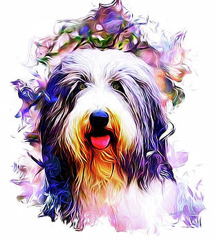 Kathy Kelly - Colorful Bearded Collie