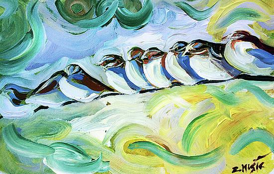 Colorful Birds by Zlatko Music