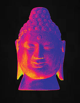 colorful Buddha Borobudur  by Terrell Kaucher