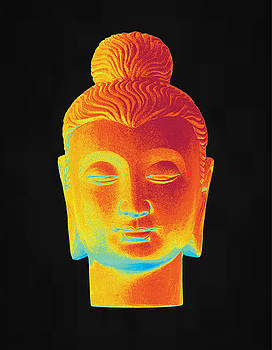colorful Buddha Gandhara by Terrell Kaucher