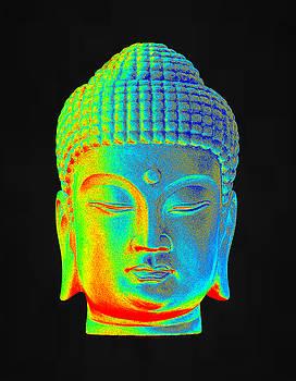 colorful Buddha Korean by Terrell Kaucher