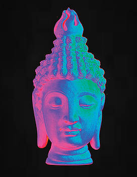 colorful Buddha Sukhothai by Terrell Kaucher