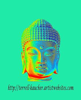 Colorful Buddha website  by Terrell Kaucher