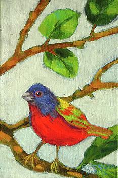 Colorful Bunting by Rhett Regina Owings