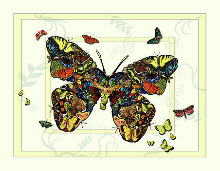 Colorful Butterfly Collage by Deborah Smith