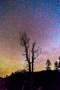 James BO Insogna - Colorful Celestial Night Portrait