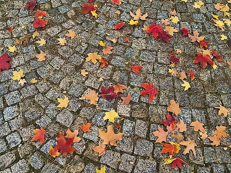 Colorful Cobblestones by Andrew Kazmierski