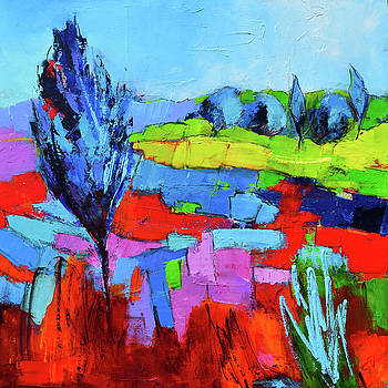 Colorful field by Elise Palmigiani