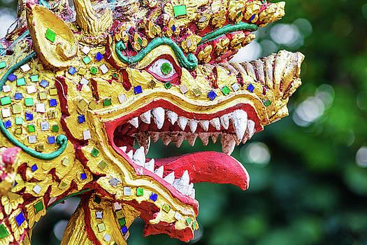 Colorful dragon head sculpture by Lukasz Szczepanski