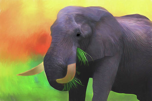 Colorful Elephant by Kay Kochenderfer