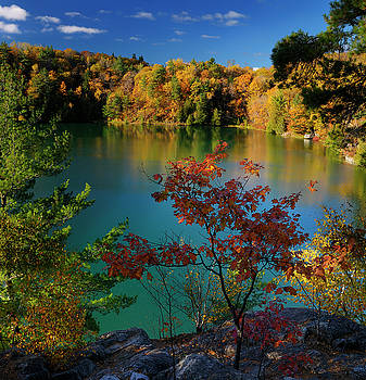 Reimar Gaertner - Colorful Fall leaves against the aqua blue of Pink Lake Gatineau
