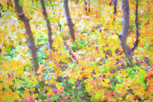 Colorful Forest Abstract by James BO Insogna