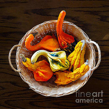 Colorful Gourds by Catherine Sherman