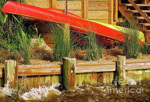 Lois Bryan - Colorful Kayak Duo