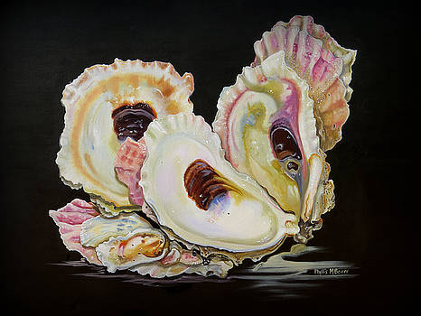 Colorful Oyster Shells by Phyllis Beiser