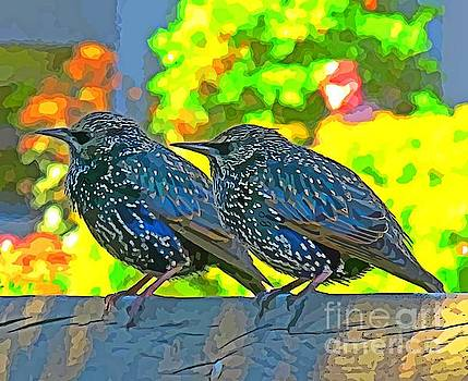 John Malone - Colorful Painting of Birds