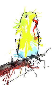 Colorful Parrot by ZileArt