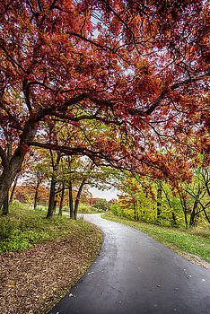 Colorful Path by Christopher Broste