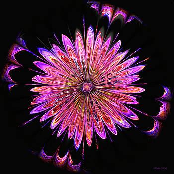 Kathy Kelly - Colorful Pinwheel