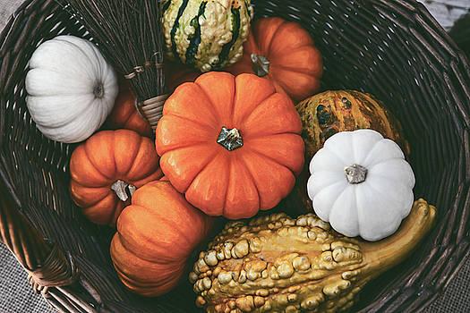 Colorful Pumpkins by Evgeniya Lystsova