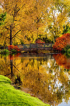 Colorful Reflections by Kristal Kraft