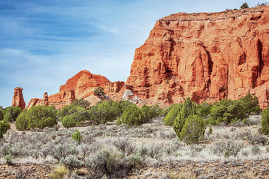 Colorful Rock formations in Kodachrome Basin State park, Utah by Daniela Constantinescu