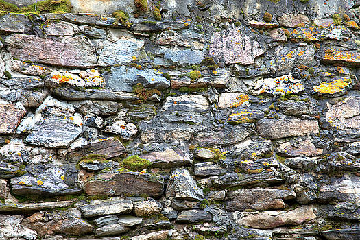Colorful Rocky Mountain Nature Wall by James BO Insogna