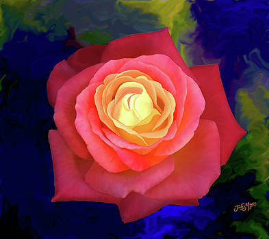 Colorful Rose 2 by James  Mingo