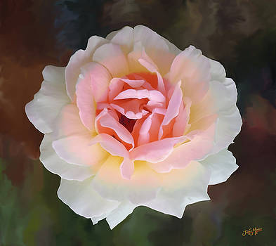 Colorful Rose by James  Mingo