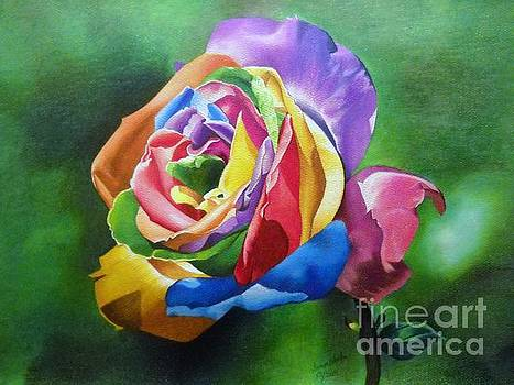 Colorful Rose by Sonya Walker