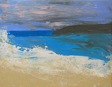 Colorful Seas by Brenda L Smith
