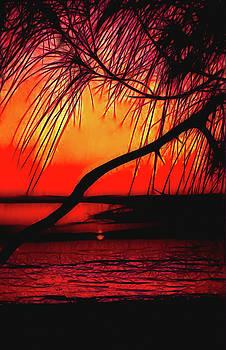 Colorful Sunset by Rosalie Scanlon