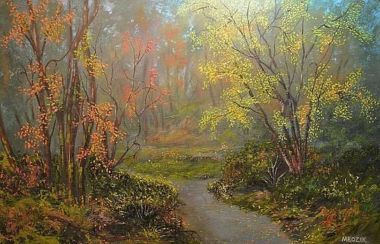 Colorful Walk  by Michael Mrozik