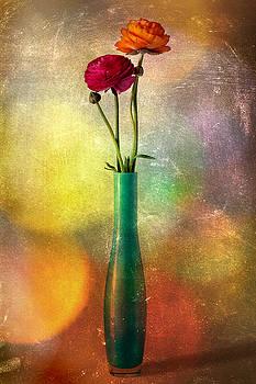 Barbara Corvino - Colorfully buttercups