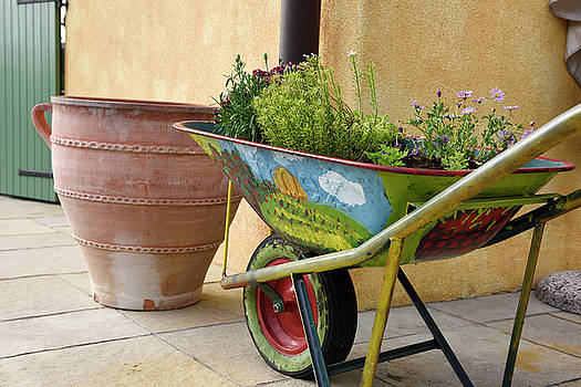 Colorfully painted wheelbarrow with flowers on outdoor courtyard by Reimar Gaertner