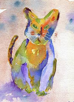 Colorpatch Cat by Andrea Rubinstein