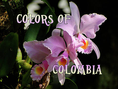 Colors of Colombia by Blair Wainman