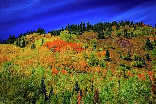 Colors of Colorado by Kay Kochenderfer