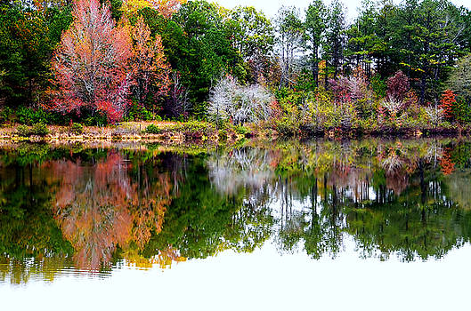 Colors of Fall by Charles Bacon Jr