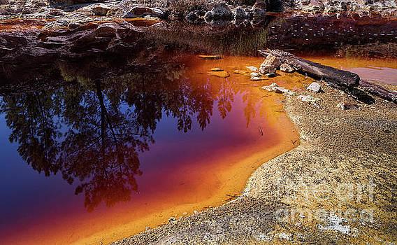 Hernan Bua - Colors of nature