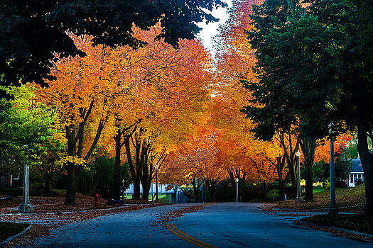 Colors Of The Season by Daniel Chen