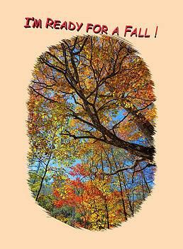 John M Bailey - Colors on High 3