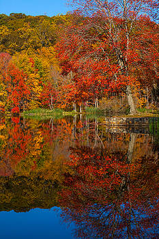 Karol Livote - Colors Reflect