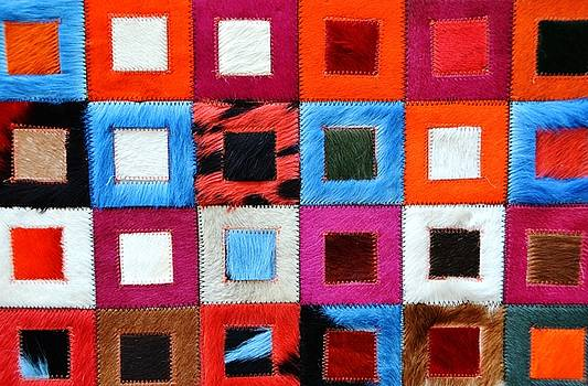 Colors by Sabrina Vera