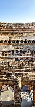 Weston Westmoreland - Colosseum Cross Section