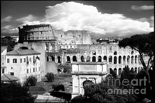 Colosseum from Roman Forums Black and White  by Stefano Senise